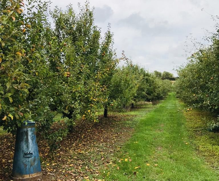 Charlton Orchards