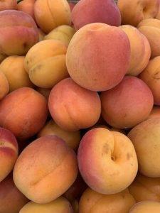 Apricot small