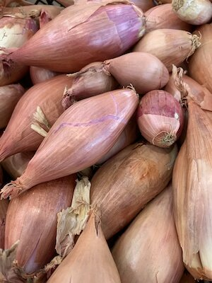 Banana Shallot small