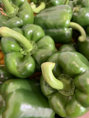 Green Pepper small