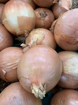 Large Onions small