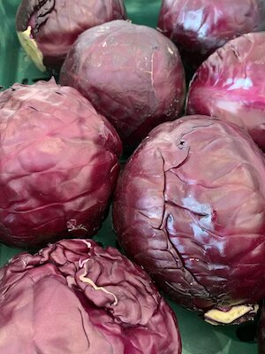 Red Cabbage small
