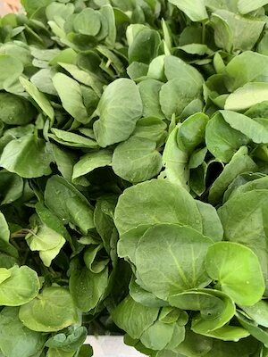Watercress small