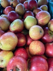 Cox-Apples